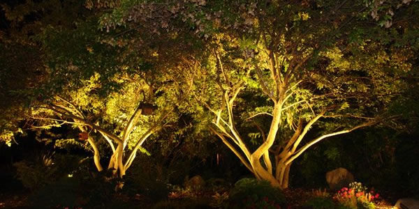 Outdoor Lighting by Marlborough Turf Professionals