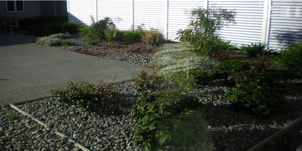 Wairau Hospital Outdoor Reno
